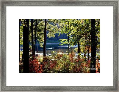A Peek At Lake O The Pines Framed Print by Kathy  White