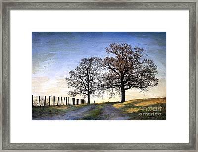 A Perfect Morning In April Framed Print by Sari Sauls