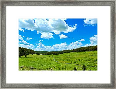 A Place To Relax Framed Print by Shane Bechler