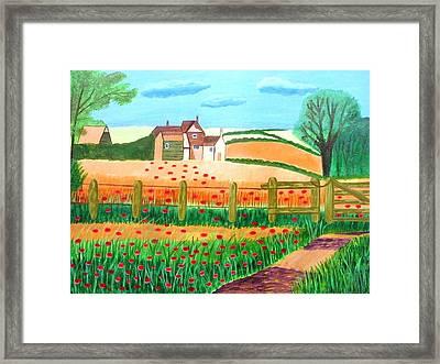 A Poppy Field Framed Print by Magdalena Frohnsdorff