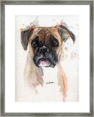 A Portrait Of A Boxer Dog Framed Print by Angel  Tarantella
