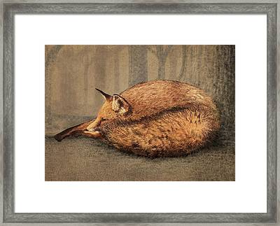 A Quiet Place Framed Print by Eric Fan