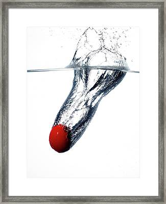 A Red Birds Egg Dropped Into Water Framed Print by Rebecca Hale