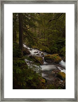 A River Passes Through Framed Print by Mike Reid