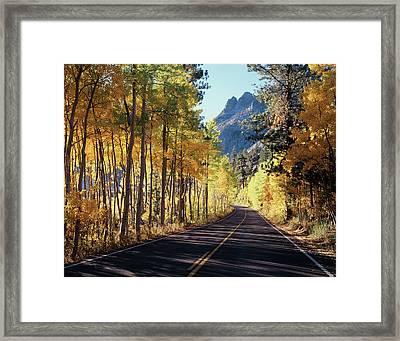 A Road Through The Autumn Colors Framed Print by Christopher Talbot Frank