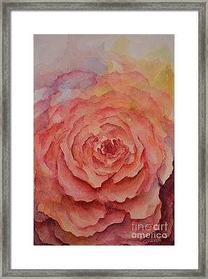 A Rose Beauty Framed Print by Kathleen Pio