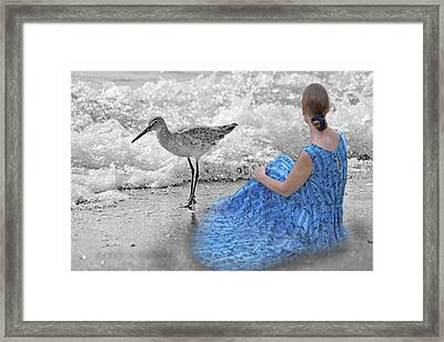 A Sandpiper's Dream Framed Print by Betsy C Knapp
