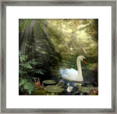 A Shady Brook Framed Print by Morag Bates