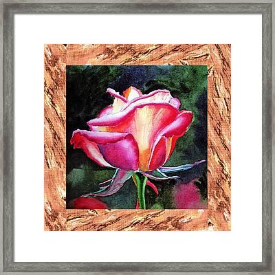 A Single Rose The Silky Light Framed Print by Irina Sztukowski