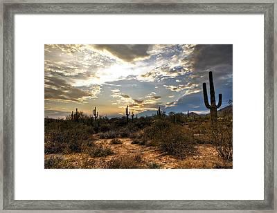 A Sonoran Desert Sunset  Framed Print by Saija  Lehtonen