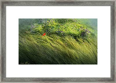 A Spot Of Red Framed Print by Aaron Blaise