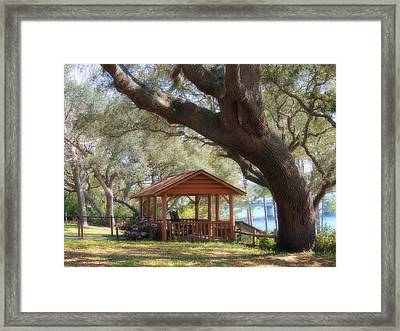 A Spring Day Framed Print by Teresa Schomig