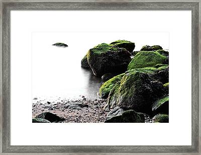 A Study In Green Framed Print by JC Findley