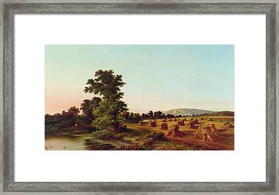 A Surrey Cornfield Framed Print by Walter Williams