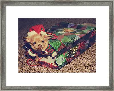 A Sweet Christmas Surprise Framed Print by Laurie Search