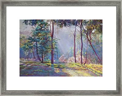 A Symphony Of Bush Colours Framed Print by Lynda Robinson