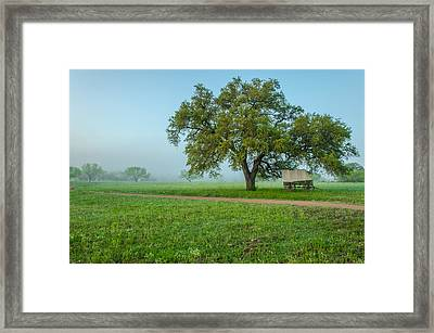 A Texas Morning Framed Print by Jeffrey W Spencer