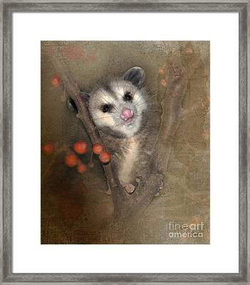 A Thief In The Night Framed Print by Betty LaRue