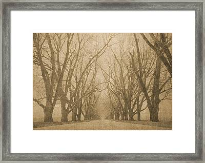 A Thousand Words Framed Print by Brett Pfister