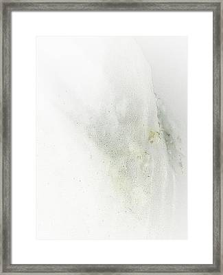 A Touch Of Color Framed Print by Marcia Lee Jones