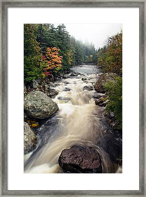 A Touch Of Fall Framed Print by Mark Papke