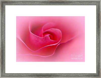 A Touch Of Softness Framed Print by Kaye Menner