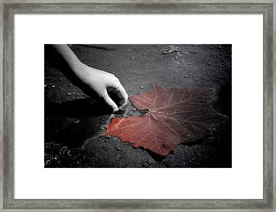 A Treasure To One Framed Print by Trish Mistric