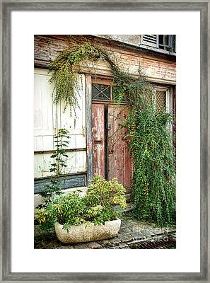A Very Old Door Framed Print by Olivier Le Queinec