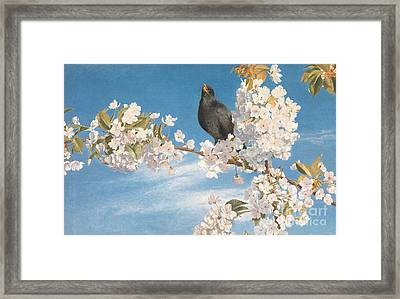 A Voice Of Joy And Gladness Framed Print by John Samuel Raven