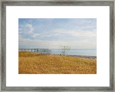 A Walk In Nature Framed Print by Kim Hojnacki