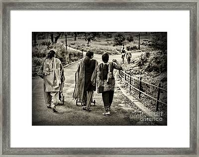 A Walk In The Park Framed Print by Paul Ward