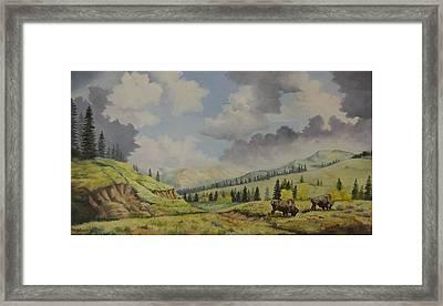 A Warm Day At Yellowstone Nat. Park Framed Print by Wanda Dansereau