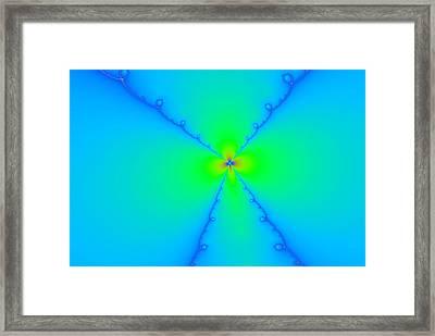 A Wild Woven Flower Framed Print by Jeff Swan