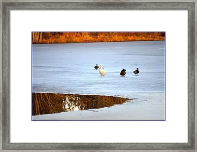A Winter Lake Framed Print by Sonali Gangane