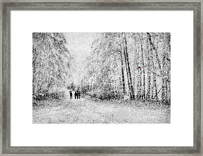 A Winter Stroll Framed Print by Darren Fisher