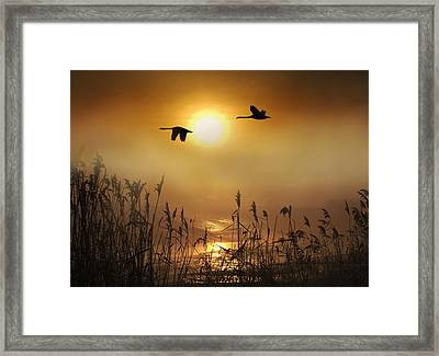 A Winters Tale Framed Print by Adrian Campfield