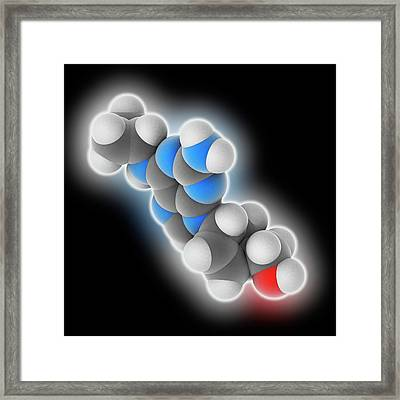 Abacavir Drug Molecule Framed Print by Laguna Design