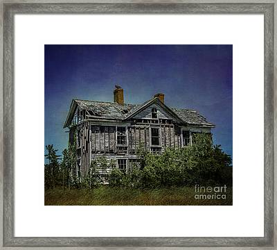 Abandoned Dream Framed Print by Terry Rowe