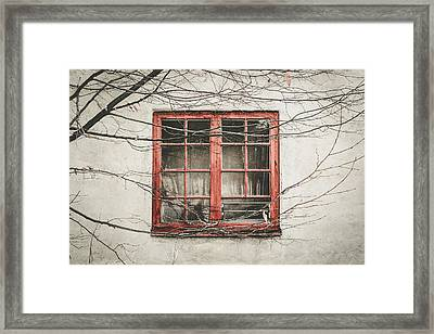 Abandoned House Detail With Old Wooden Window II Framed Print by Aldona Pivoriene