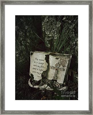 Abandoned Old Bible In A Cemetery Framed Print by Amy Cicconi