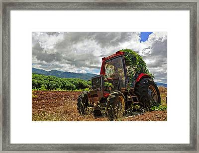 Abandoned Tractor Framed Print by Marcia Colelli