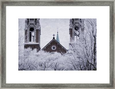 Above It All Framed Print by Joan Carroll