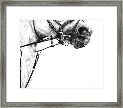 Above The Bit Framed Print by Sheona Hamilton-Grant