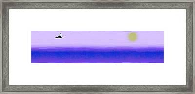 Above The Fray Framed Print by Tim Allen