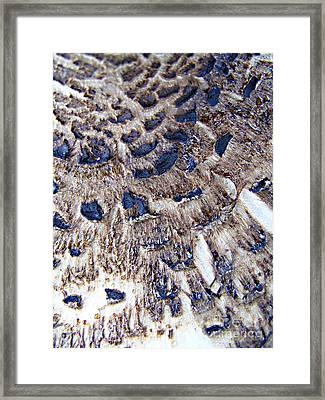 Abstract Accidental Sapphires Framed Print by Linsey Williams