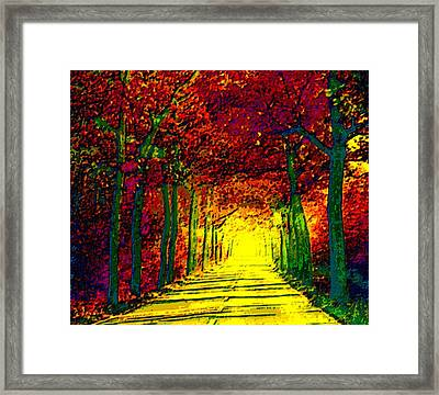 Abstract Decorative Hazy French Autumn Drive II Framed Print by L Brown