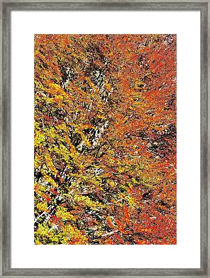Abstract Fall Framed Print by Cristina-Velina Ion