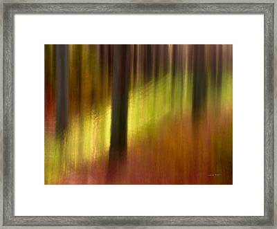 Abstract Forest 3 Framed Print by Leland D Howard