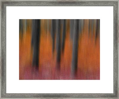 Abstract Forest 4 Framed Print by Leland D Howard
