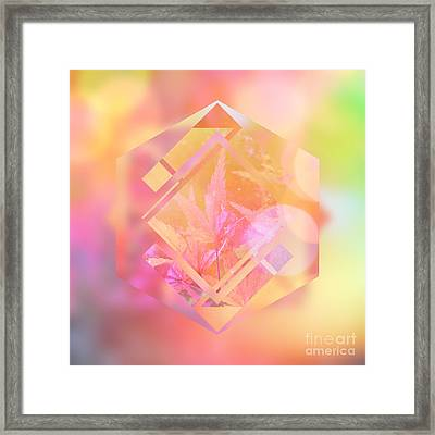 Abstract Maple Leaf Magic 1 Framed Print by Beverly Claire Kaiya